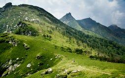 Il Buckhorn Ridge della montagna di Qinling Immagini Stock