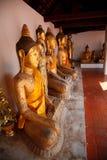 Il buddha anziano Fotografia Stock Libera da Diritti