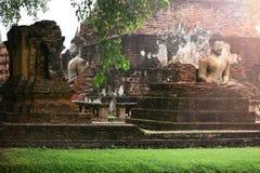 Il Buddha dentro la parete di vecchia città Immagine Stock