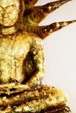 Il Buddha ed il Naga. Immagini Stock