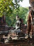 Il Buddha nella meditazione postured dal lato di angolo, foto verticale Immagini Stock Libere da Diritti