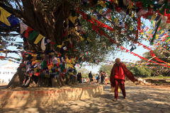 Il buddista fa le preghiere al tempio di Mayadevi Fotografie Stock