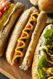 Il buongustaio ha grigliato tutti i cani di Hots del manzo Fotografia Stock Libera da Diritti