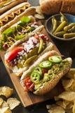 Il buongustaio ha grigliato tutti i cani di Hots del manzo Fotografie Stock Libere da Diritti