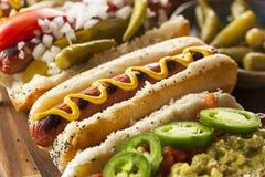 Il buongustaio ha grigliato tutti i cani di Hots del manzo Immagine Stock