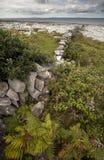 Il Burren irlandese Fotografie Stock