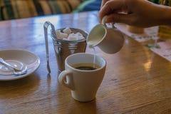 Il caffè caldo in una tazza bianca, mano versa il latte immagini stock