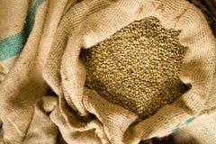 Il caffè crudo semina l'agricoltura in serie Bean Produce della borsa di tela da imballaggio Fotografia Stock