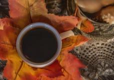 Il caffè nero caldo ha riempito la piccola tazza del briciolo immagini stock libere da diritti