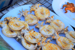 Il calamaro fresco ha grigliato con carbone sul piatto Immagine Stock