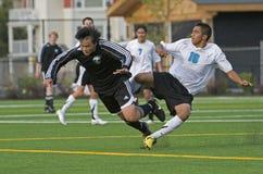 Il calcio ruba il guaime Fotografie Stock Libere da Diritti