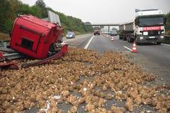Il camion distrugge dalle rape Fotografie Stock Libere da Diritti