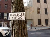 Il camminatore del cane, pone freno prego il vostro cane, NYC, NY, U.S.A. Immagini Stock Libere da Diritti