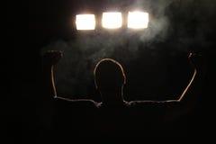 Il campione Fotografie Stock Libere da Diritti