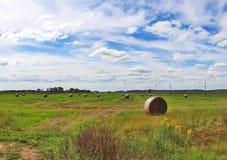Il campo con le balle dei mucchi di fieno Fotografie Stock