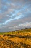 Il campo con un verde ed erba falciata al tramonto Fotografia Stock