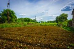 Il campo dell'azienda agricola già ha fertilizzato e aspetta per coltivare con i cespugli intorno ed il bello cielo come foto del Immagini Stock