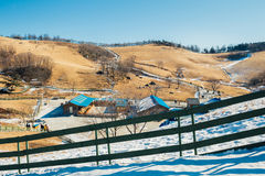 Il campo di erba asciutta e la montagna e la neve e l'inverno abbelliscono nell'allevamento di pecore di Daegwallyeong, Corea Fotografie Stock Libere da Diritti