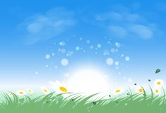 Il campo di erba del paesaggio con l'aumento del sole splende brillantemente, foglie e illustrazione vettoriale