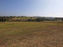 Il campo di erba ed il parco al sole fotografia stock