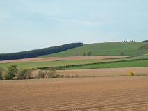 Il campo di Potatoe ed il pascolo Scozia orientale dentro possono Fotografia Stock Libera da Diritti