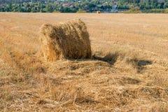 Il campo raccolto con paglia imballa il fieno-rotolo Fotografia Stock Libera da Diritti