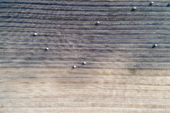 Il campo raccolto ha preso dall'aria, con i grandi rotoli dello stra Immagini Stock Libere da Diritti
