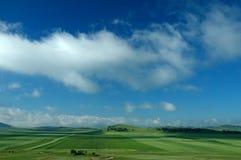 Il campo verde Immagini Stock