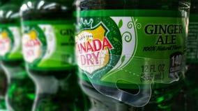Il Canada Ginger Ale asciutto fotografia stock libera da diritti