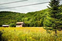 Il Canada - vicino a Mont-Tremblant Fotografie Stock Libere da Diritti