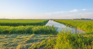 Il canale attraversa un paesaggio rurale alla luce dell'alba Immagini Stock