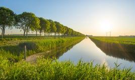 Il canale attraversa un paesaggio rurale alla luce dell'alba Fotografia Stock Libera da Diritti