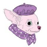 Il cane è stato disegnato a mano Cane di razza Vettore del cane Chihuahua Fotografia Stock Libera da Diritti