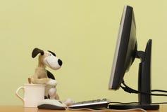 Il cane fotografie stock