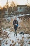 Il cane cammina in canne Fotografia Stock Libera da Diritti