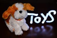 Il cane con i giocattoli dell'iscrizione Fotografia Stock Libera da Diritti