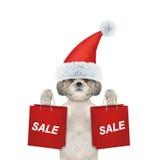 Il cane con il vestito da festa di Natale sostiene con il sacchetto della spesa Immagine Stock