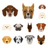 Il cane cresce icone del fumetto nella raccolta dell'insieme per progettazione Museruola di un'illustrazione di web delle azione  Immagini Stock Libere da Diritti