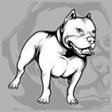 Il cane cresce il vettore americano del disegno della mano del pitbull illustrazione di stock