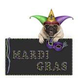 Il cane del carlino di martedì grasso con il cappello di carnevale, le perle e la maschera veneziana che appendono sulla lavagna  fotografia stock
