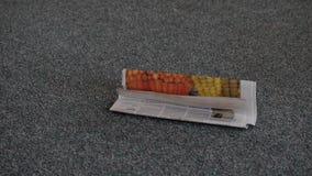 il cane di assistenza ha portato i giornali stock footage