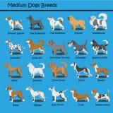 Il cane medio cresce progettazione sveglia dei fumetti del cucciolo di cane di vettore di progettazione del fumetto del cane illustrazione di stock