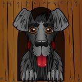 Il cane nella cabina La scatola di legno e un cane nero Stile del fumetto Carattere allegro illustrazione vettoriale