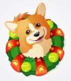Il cane sveglio ed il Natale del Corgi di Lingua gallese si avvolgono, illustrazione del fumetto Immagine Stock