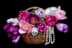 Il canestro con i mazzi variopinti dei tulipani fiorisce sul backgro nero Fotografia Stock Libera da Diritti