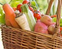 Il canestro di vimini è pieno con le verdure organiche Immagine Stock Libera da Diritti