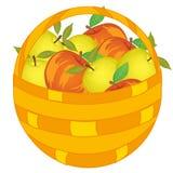 Il canestro intrecciato ha pervaso la mela rossa e verde matura illustrazione vettoriale