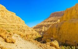 Il canyon arancio immagini stock