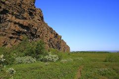 Il canyon di Asbyrgi Immagini Stock Libere da Diritti