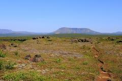 Il canyon di Asbyrgi Fotografia Stock Libera da Diritti